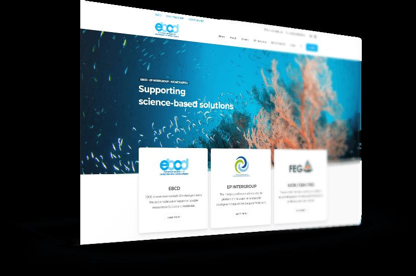 Κατασκευή ιστοσελίδας για διεθνή οργανισμό στο Βέλγιο